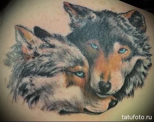 тату волк и волчица 1