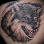 тату оскал волка 2