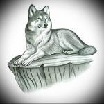 эскиз волка который лежит