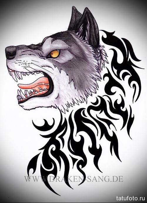 эскиз тату волк рычит