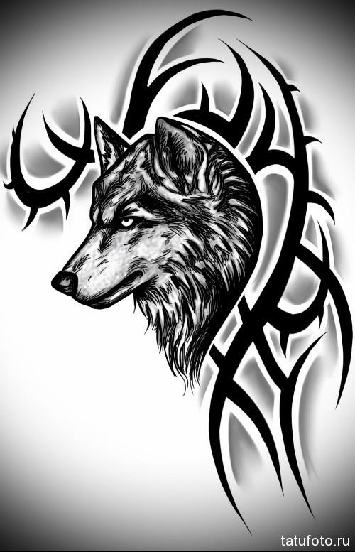 эскиз тату черный волк и абстракция