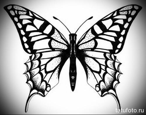Эскиз татуировки с бабочкой 15