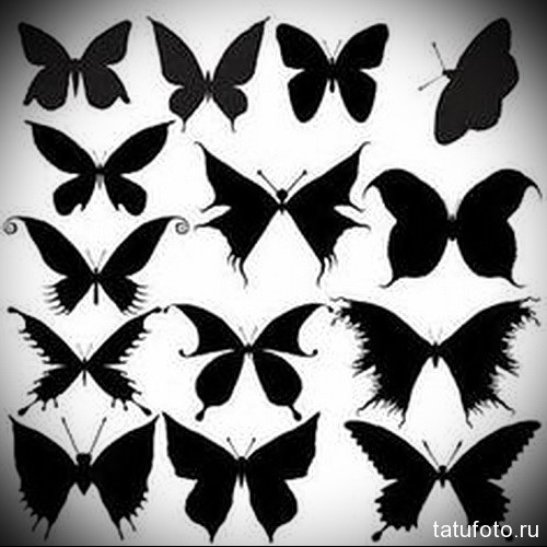 Эскиз татуировки с бабочкой 17