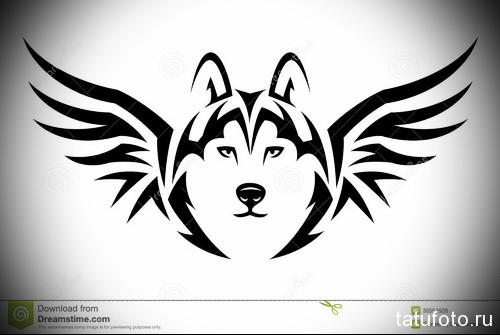 волк с крыльями тату 2