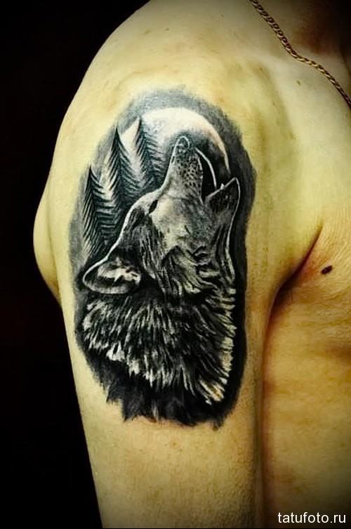 воющий волк тату 3