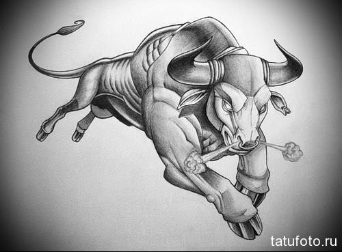 реалистичный бык 3д - Тату быка эскиз
