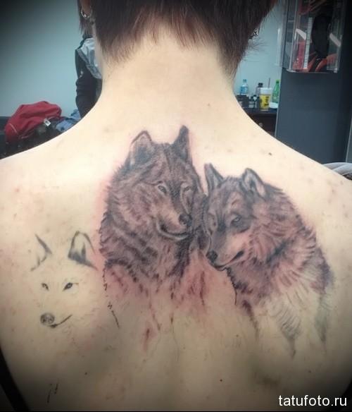 тату волка на лопатке 2