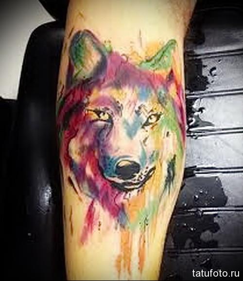 тату волка на ноге 3