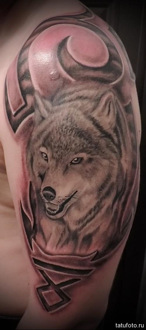 тату волка на руке 3