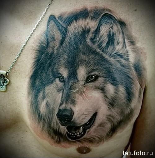 тату мужские волк 2