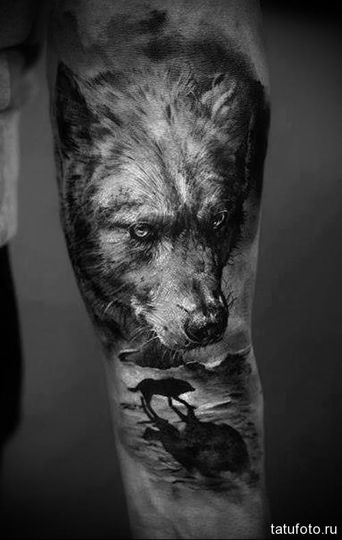 тату черный волк 3