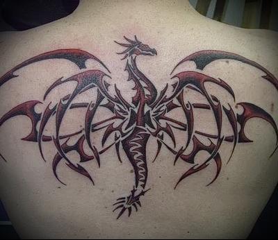 трайбл тату рисунок дракона на всю спину тонкими узорами