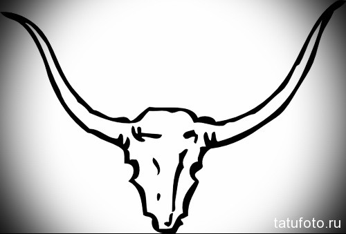 череп быка с рогами - Тату быка эскиз