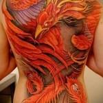 жар птица тату на всю спину - большой рисунок в цвете
