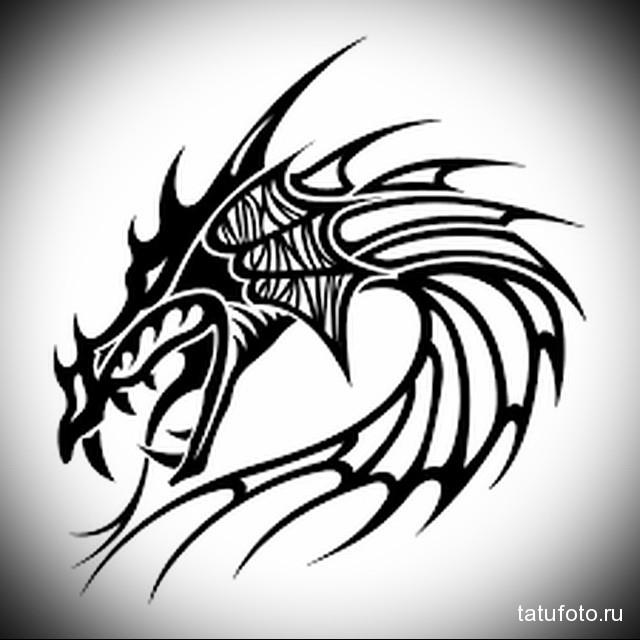 Морда драконов тату 144