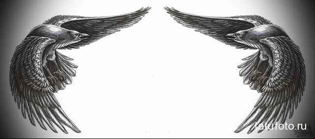 эскиз тату ворон на спине 3