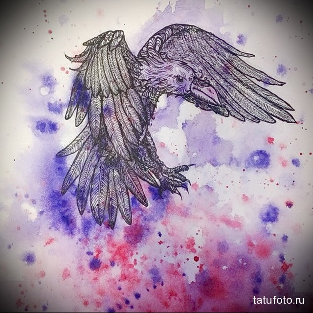 эскиз цветной ворон тату 11