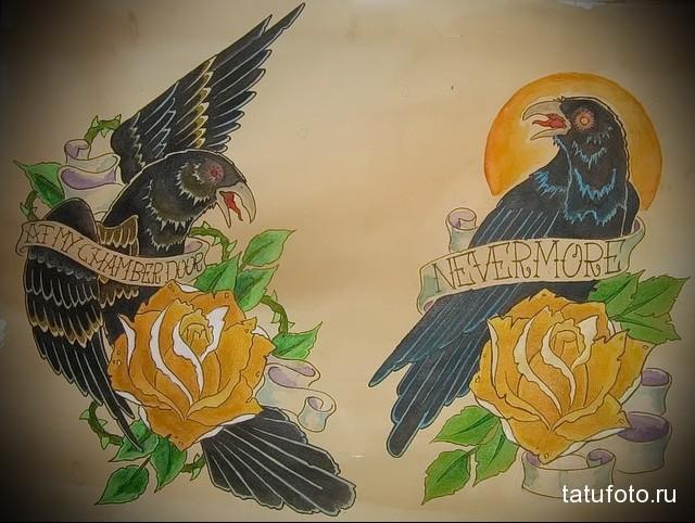 эскиз цветной ворон тату 13