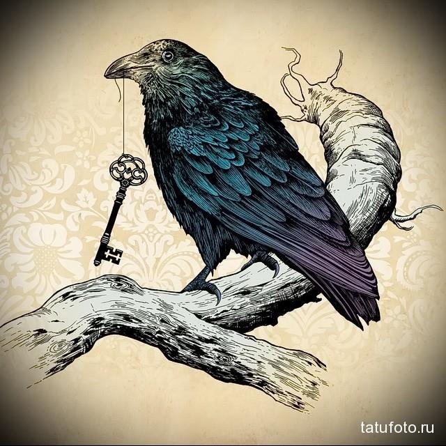 эскиз цветной ворон тату 7