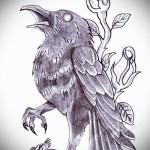 эскиз цветной ворон тату 8