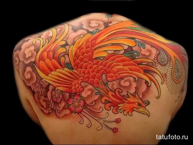 жар птица тату верхняя часть спины
