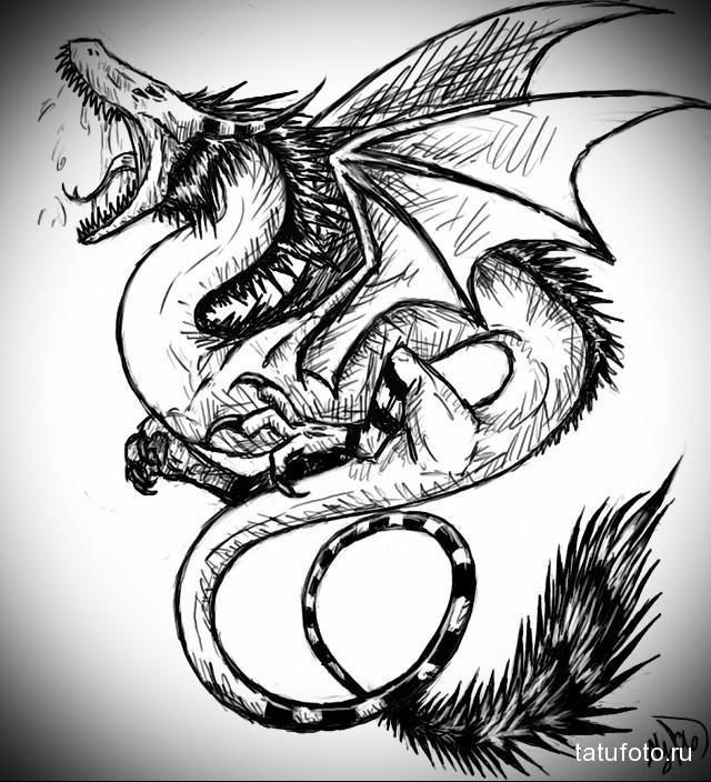 эскиз тату дракон на лопатке 6
