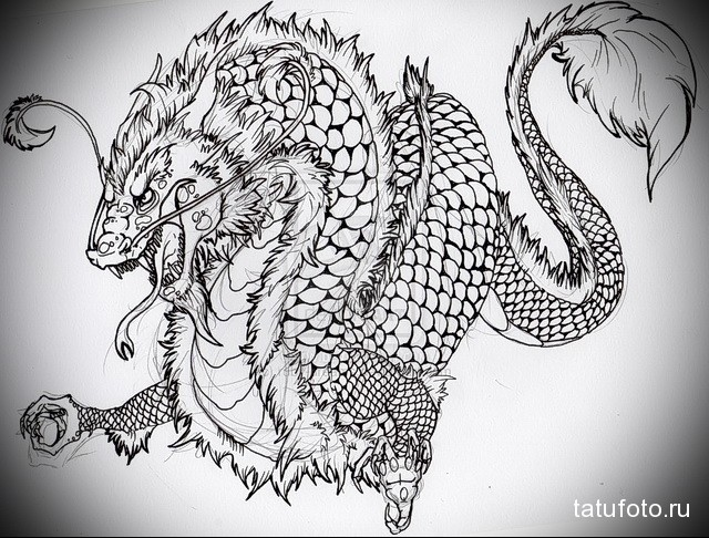эскиз тату дракон на плече 3