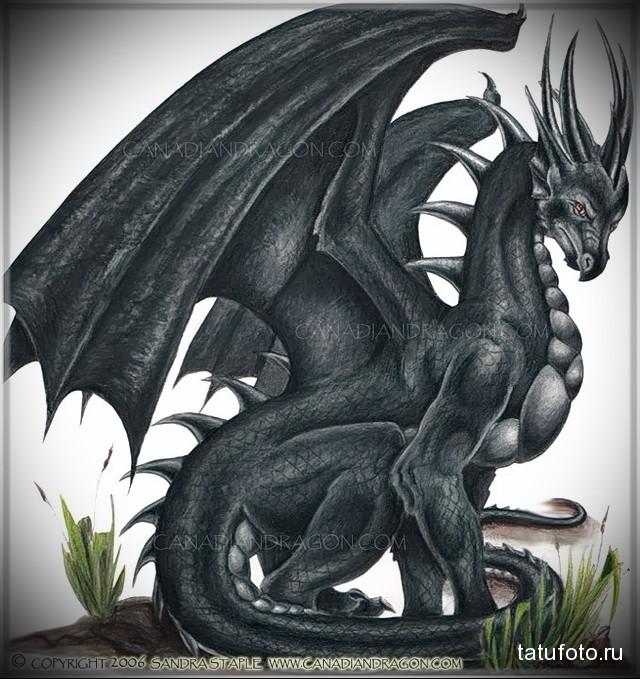 эскиз тату черный дракон 6