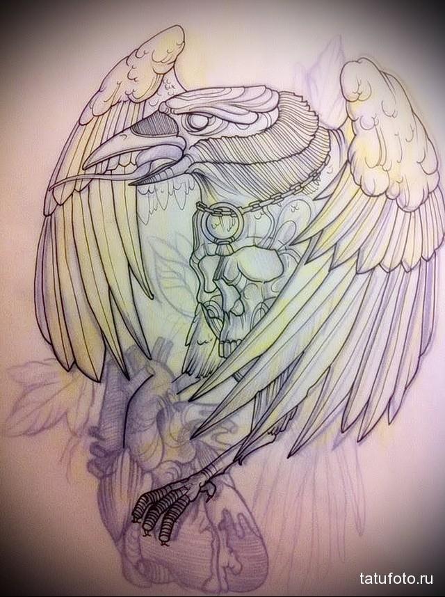 эскиз цветной ворон тату 1