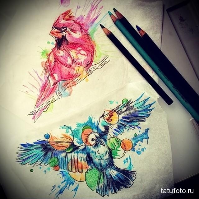 эскиз цветной ворон тату 19