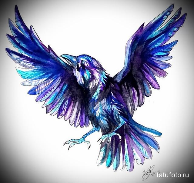 эскиз цветной ворон тату 2