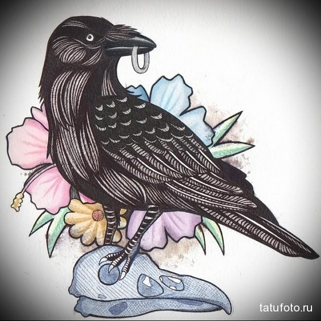 эскиз цветной ворон тату 6