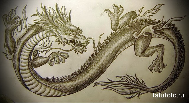 Chinese dragon tattoo sketch