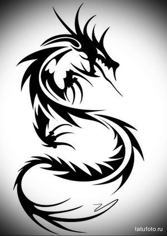 sketch male dragon tattoo