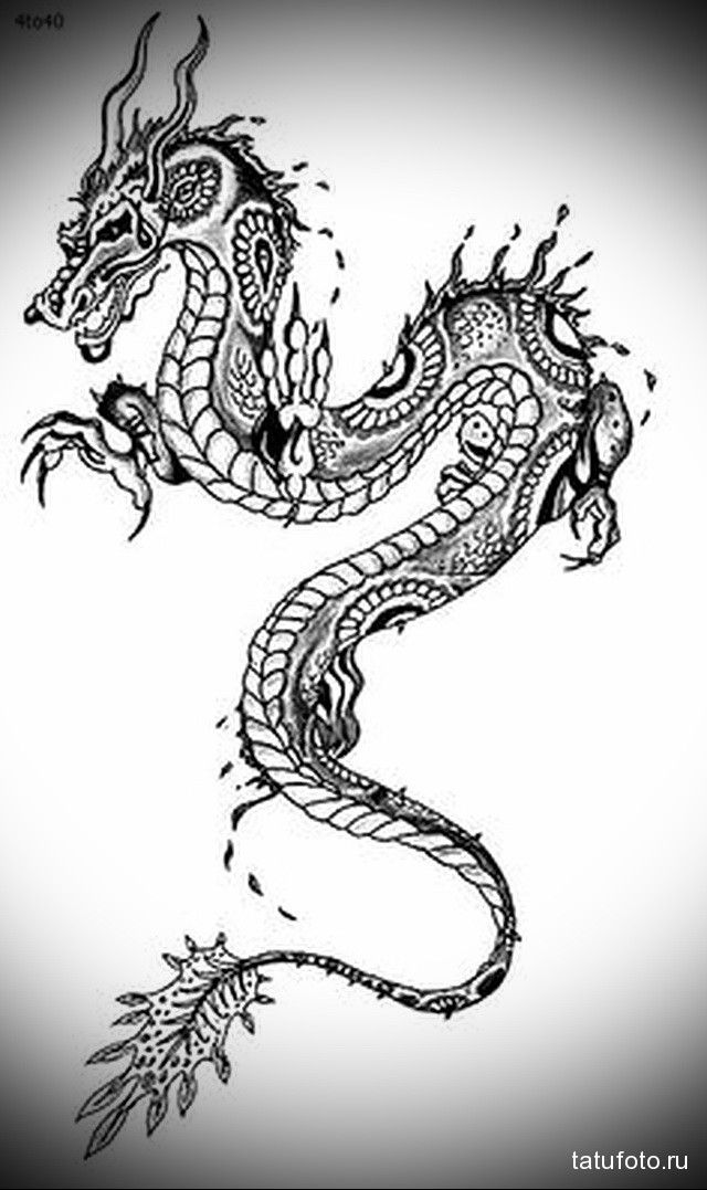 sketch of a dragon tattoo on her hip