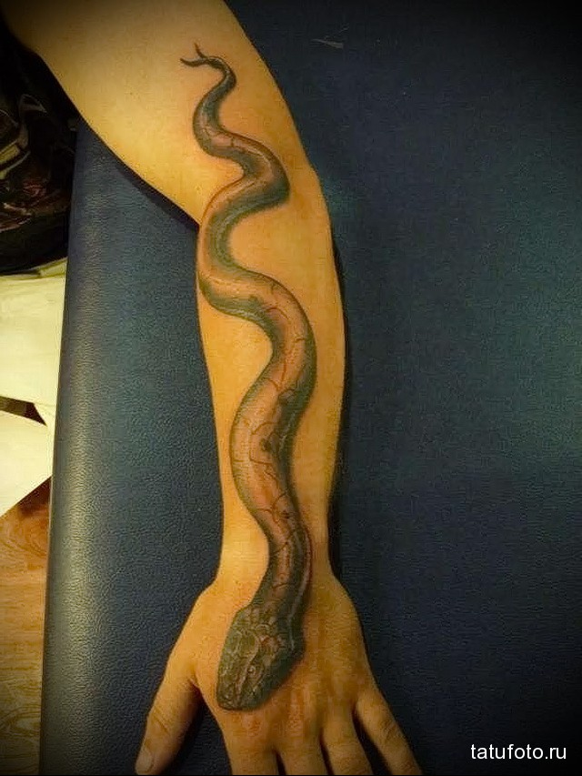 snake tattoo on his arm