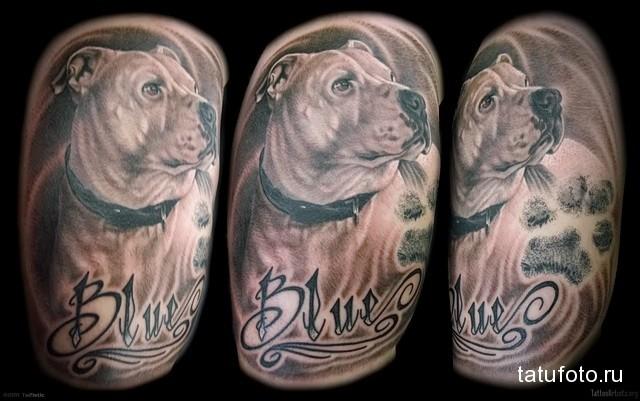 Значение татуировки собака 4