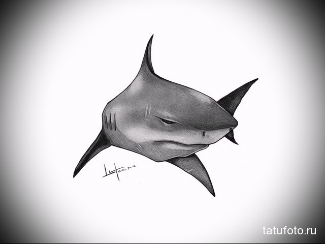 Значение тату акула 6