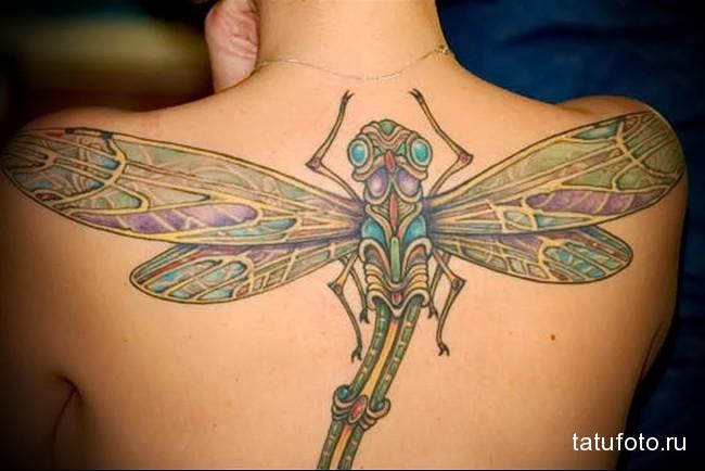 татуировка стрекоза на всю спину