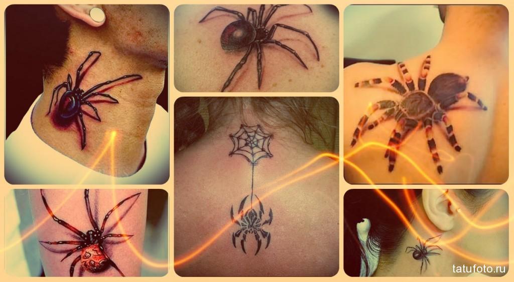 Значение татуировки паук НА ФОТО