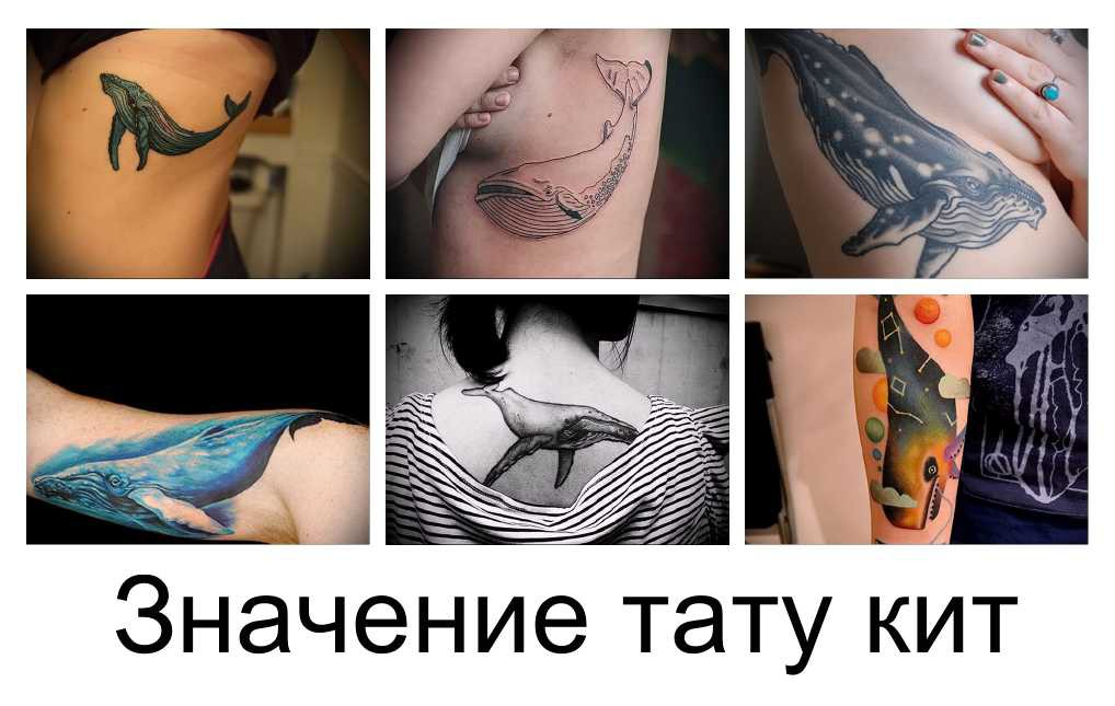 Значение тату кит фото