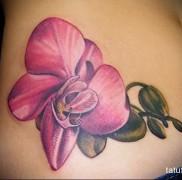 Значение тату орхидея 23