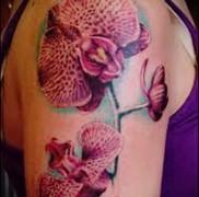 Значение тату орхидея 32
