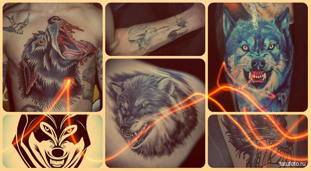Татуировка оскал волка, тигра, медведя, льва
