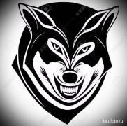 Значение тату оскал волка 123