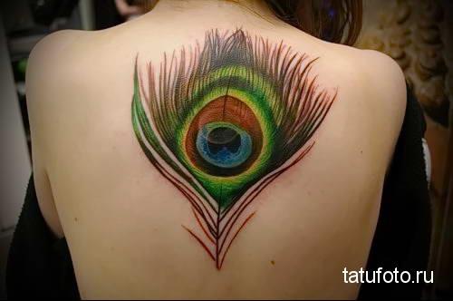 большое перо павлина в татуировке по середине спины девушки