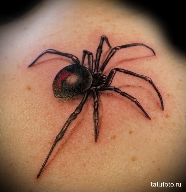 смысл, история, значение тату паук на фотоэ