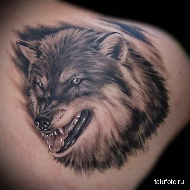 тату с грозным оскалом волка на фото
