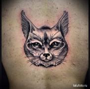 фотография татуировки с рысью – пример – вариант