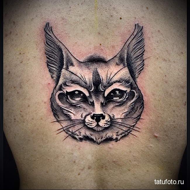 фотография татуировки с рысью - пример - вариант